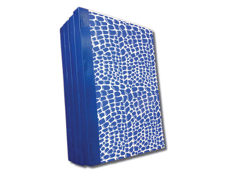 Custom Carbonless books delivery dockets for meat supplier with blue hard cover